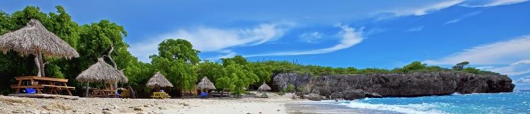 Jaarlijkse studiereis dermatologie op Curaçao in januari!